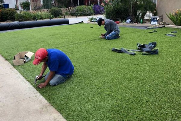 Lawns & Turf - Solid Green Construction